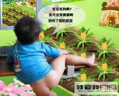 农场版qq真人偷菜搞笑表情二代手火影的表情包游求图片